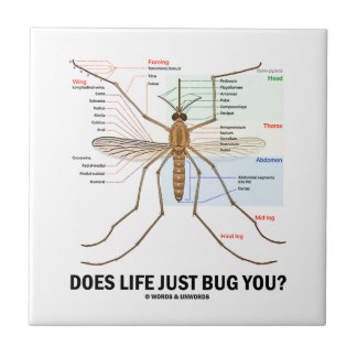 Does Life Just Bug You? (Mosquito Anatomy) Ceramic Tile