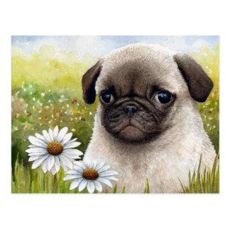 Dog 114 postcard