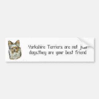 Dog 4, B, Yorkshire Terrier Bumper Sticker