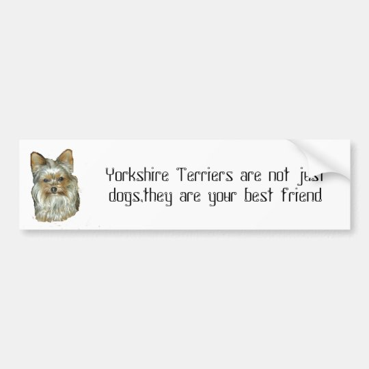 Dog 4, B, Yorkshire Terrier Bumper Sticker