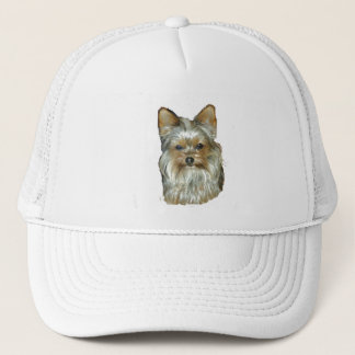 Dog 4, B, Yorkshire Terrier, Hat