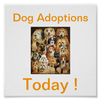 Dog Adoptions Today Signs