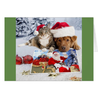 Dog and Cat Christmas Card with Santa and Ferrets
