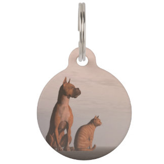 Dog and cat friendship pet ID tag