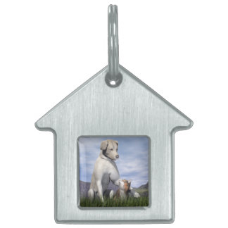 Dog and cat friendship pet name tag
