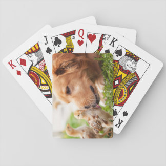 Dog and Chick Playing Cards