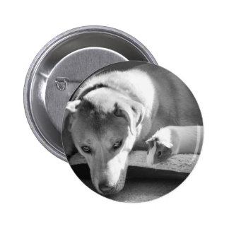 Dog and Guinea Pig Button