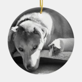 Dog and Guinea Pig Ornament