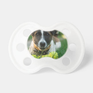 Dog and His Toy Bone Baby Pacifier