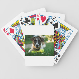 Dog and His Toy Bone Bicycle Playing Cards