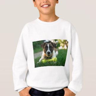 Dog and His Toy Bone Sweatshirt