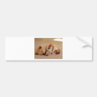 Dog and rabbit bumper sticker