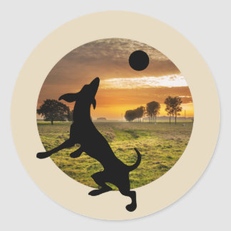 Dog at play classic round sticker
