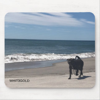 Dog at the beach. mouse pad