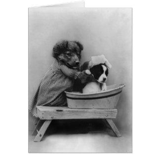 Dog Bathing Dog Card