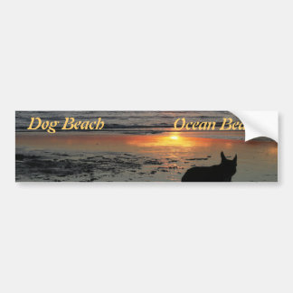 Dog Beach Car Bumper Sticker