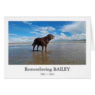 Dog bereavement card