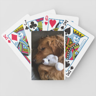 dog bicycle playing cards