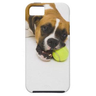 Dog biting tennis ball iPhone 5 case