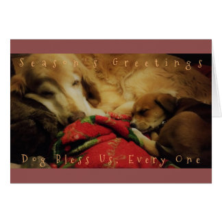 """Dog Bless Us Every One"" Holiday Greeting Card"