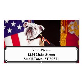 dog bulldog Navy official mascot Business Card