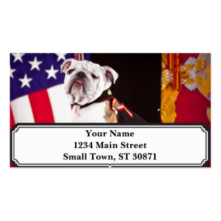 dog bulldog Navy official mascot Pack Of Standard Business Cards