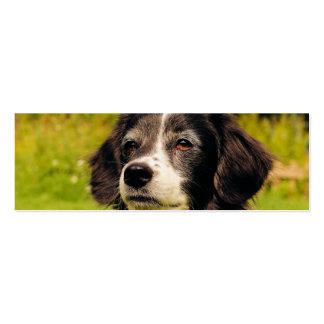 Dog Business Card