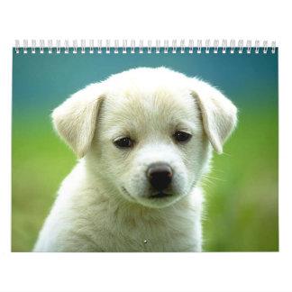 Dog calander wall calendars