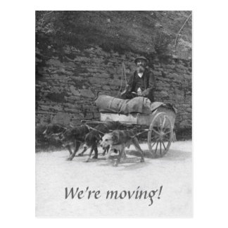 Dog cart with bearded man moving postcard