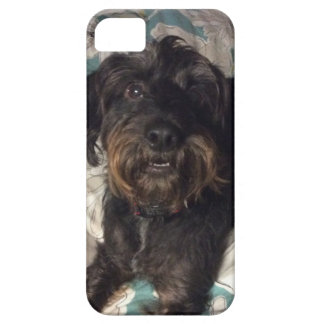 Dog Case For The iPhone 5