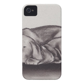 Dog & Cat Snuggle Sleeping iPhone 4 Case-Mate Cases