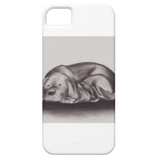 Dog & Cat Snuggle Sleeping iPhone 5 Cases