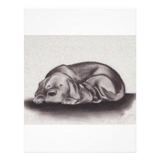 Dog & Cat Snuggle Sleeping Letterhead