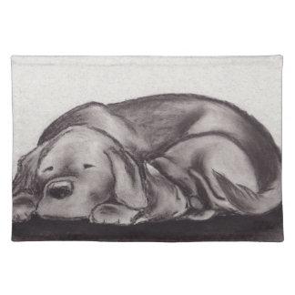 Dog & Cat Snuggle Sleeping Placemat