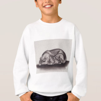 Dog & Cat Snuggle Sleeping Sweatshirt