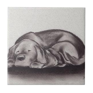 Dog & Cat Snuggle Sleeping Tile