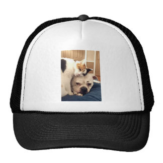 Dog Cat Snuggle Trucker Hat