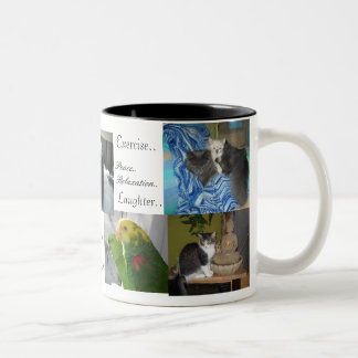 Dog,cats, birds,best friends Two-Tone coffee mug