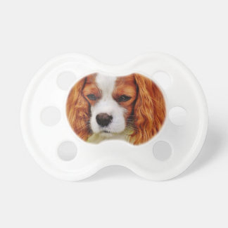 Dog Cavalier King Charles Spaniel Funny Pet Animal Pacifier