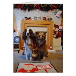 Dog Christmas Card