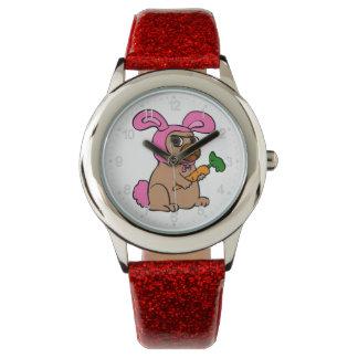 Dog costume rabbit watch