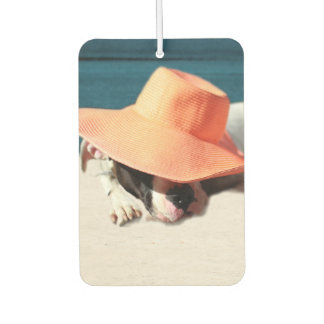 Dog Days of Summer at the Seashore Car Air Freshener