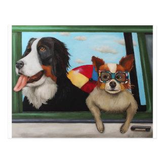 Dog Days Of Summer Postcard