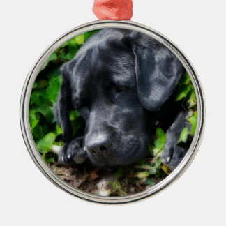 Dog days Silver-Colored round ornament