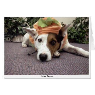 DOG,DOGS, HALLOWEEN, TRICK OR TREAT WITH LUNA GREETING CARD
