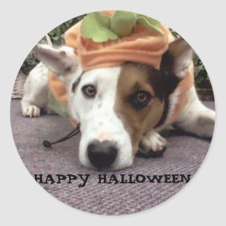 DOG,DOGS, HALLOWEEN, TRICK OR TREAT WITH LUNA CLASSIC ROUND STICKER