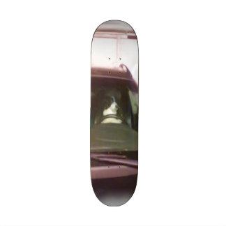 dog driving car skate board