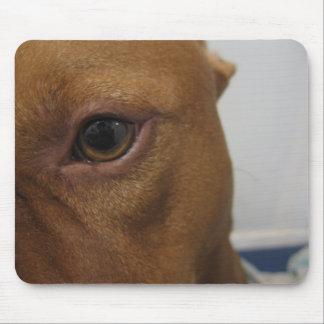 Dog eye mouse pad