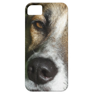 Dog Face Close Up iPhone SE + iPhone 5/5S, Barely iPhone 5 Cover