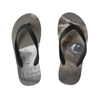 Dog Flip Flops  Designed By Yotigo